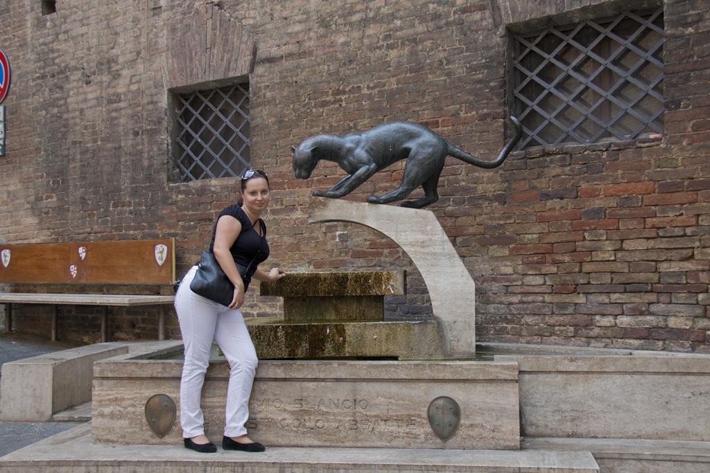 Рим флоренция пиза венеция римини